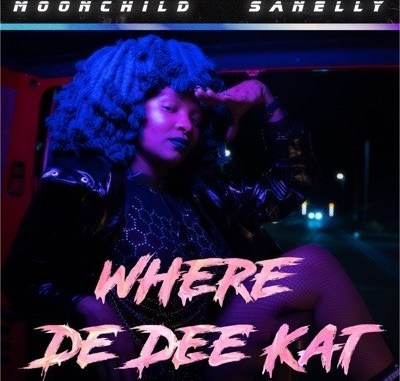 DOWNLOAD Moonchild Sanelly Where De Dee Kat Mp3 SONG fakaza house music mp3 download 2019