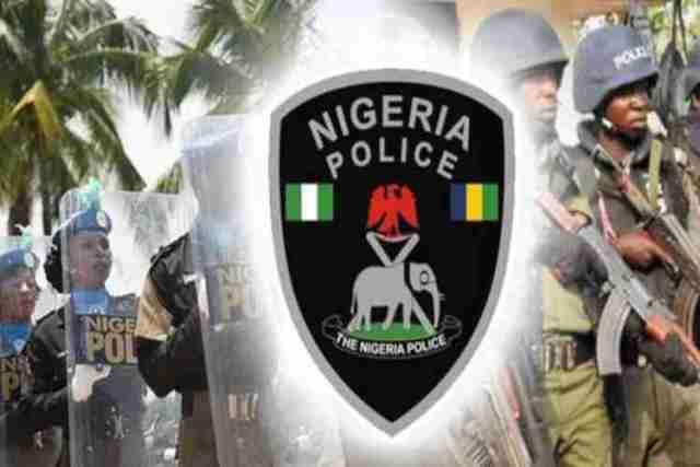 Image result for nigeria police force