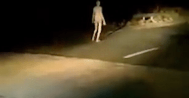 Alien Like Creature with Long Limbs Spotted Walking Along Bridge in The Middle of The Night