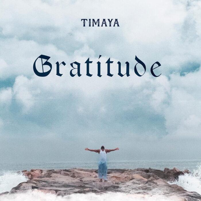 Download MP3: Timaya – Something Must To Kill A Man