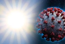 Photo of Sunlight can destroy the coronavirus in under seven minutes