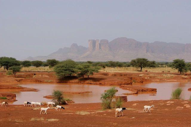 Stringer Bel, la ruta hacia Timbuktú (Wikimedia)