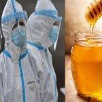 Coronavirus un remède à base de miel proposé par une communauté sénégalaise