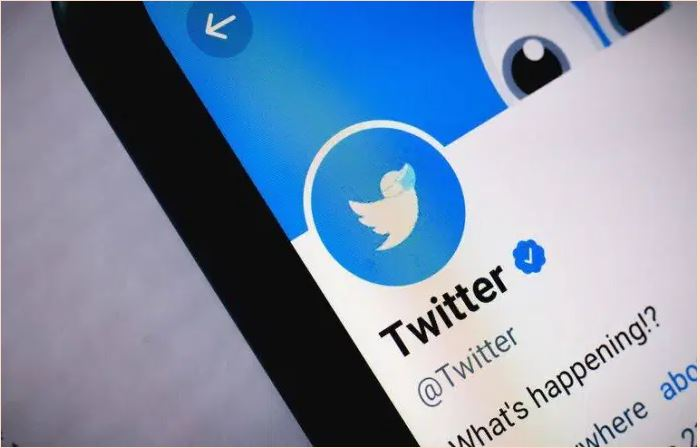 En 3 jours, le Nigeria perd plus de 15 millions USD suite à la suspension de Twitter