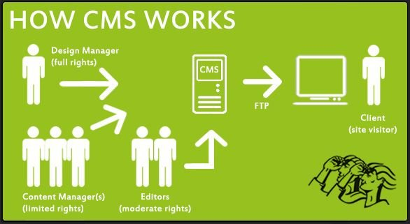 What is a CMS and How it Works