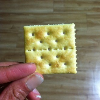 Korea's saltine. not as flaky or salty.