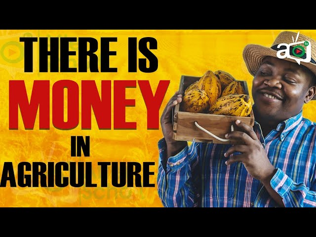 invest in Agriculture in Africa