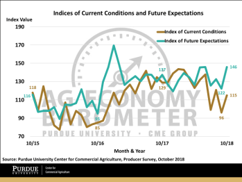 Figure 2. Indices of Current Conditions and Future Expectations, October 2015-October 2018.