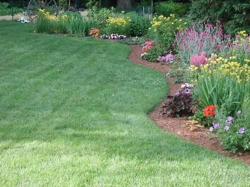 Home Lawn Garden Fertilizing Flower Garden Plants