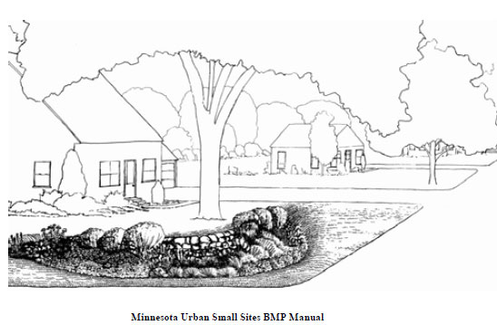 Landscape: Rain Gardens: A Way to Improve Water Quality