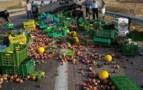 عااجل: انقلاب شاحنة كبيرة بأحد المدارات الطرقية الهامة بأكادير يتسبب في عرقلة حركة المرور، و مواطنون يتابسقون لجمع الخضر المشتتة.