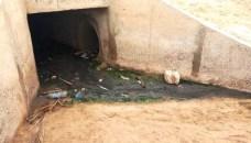 وحدة فندقية تصب مياه عادمة في شاطئ اكادير