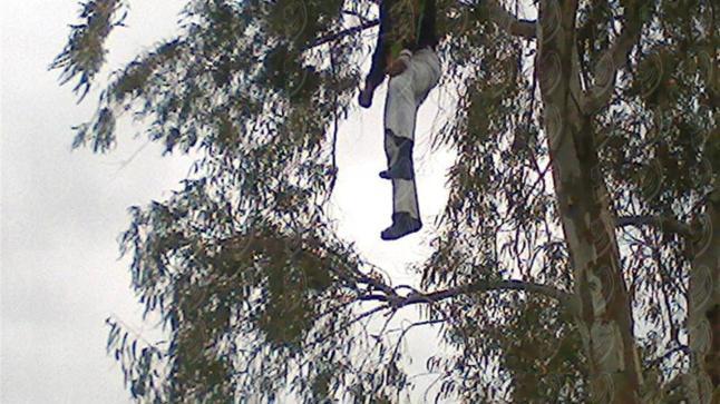 أيت ملول: العثور على جثة رجل معلقة بشجرة