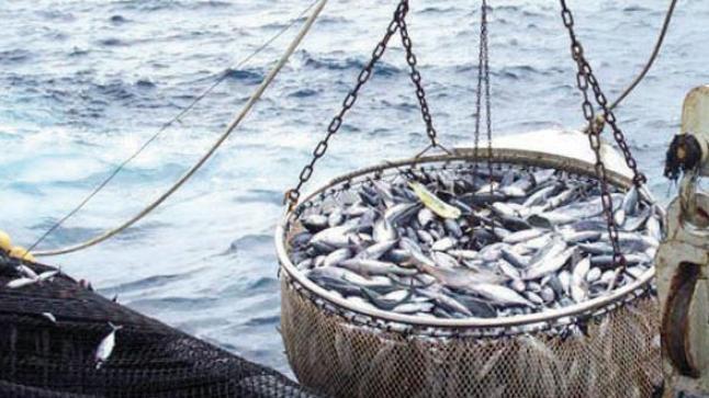 خبير ياباني يعرض في أكادير تجربة بلاده بخصوص تدبير الصيد الساحلي