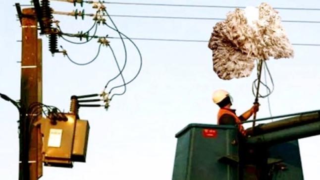 """""""بطانة"""" كبش العيد تتسبب في انقطاع التيار الكهربائي عن حي بأكادير"""