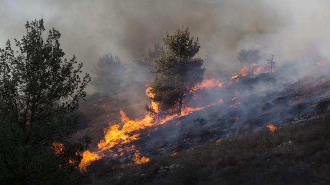 """جهود السلطات متواصلة لإخماد حريق غابة """"تلمست""""بنواحي أكادير"""