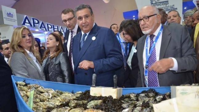 أخنوش: أكثر من 800 مليون درهم رصدت لقطاع الصيد البحري في مالية2020