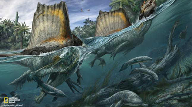 """إكتشاف أول """"ديناصور مائي"""" بالعالم في المغرب"""