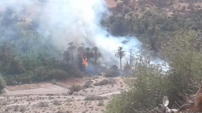 إندلاع حريق مهول بضيعات فلاحية شمال أكادير يستنفر السلطات (صور)