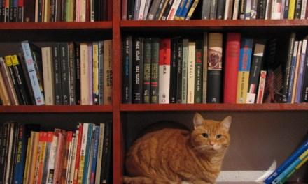 ATG Quirkies: The Cat Book Club