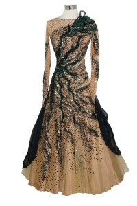 Ballroom Dress Rental: A Users Guide   Against Line of Dance