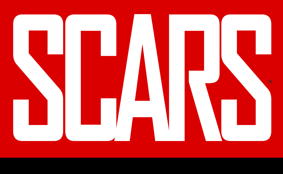 SCARS The Society of Citizens Against Romance Scams