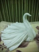 Nepalgunj hotel towel art
