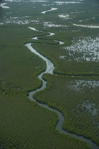 In the rainy season, the majority of Liberia becomes marshland