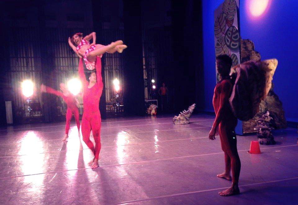 Función de ballet