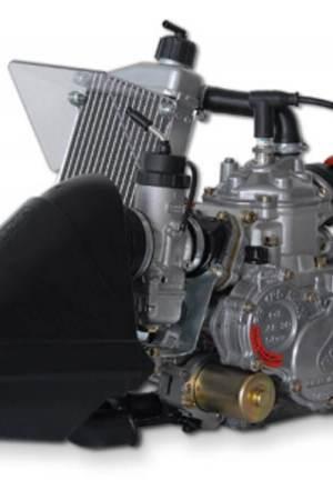 Motor para kart rotax junior max evo trasera