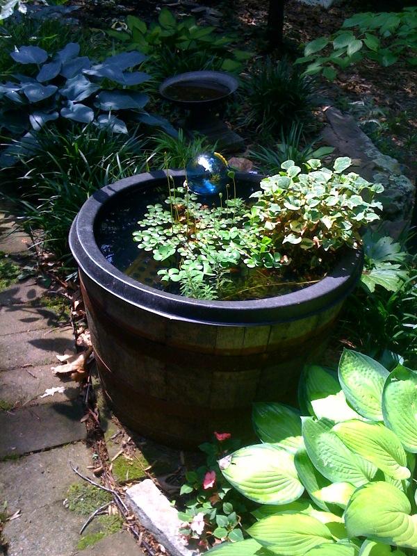 Floating Pots Ponds