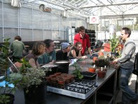 Horticultural training