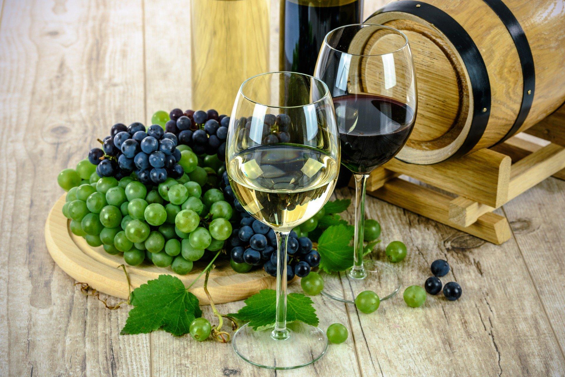 Vinho branco e tinto, Agarre o Mundo