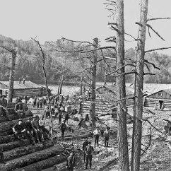 003-Logging-large