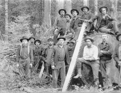 005-Logging-large