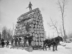 006-Logging-large