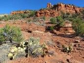 Arizona-012-large
