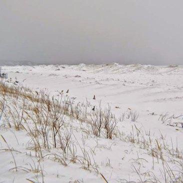 Winter-002-big