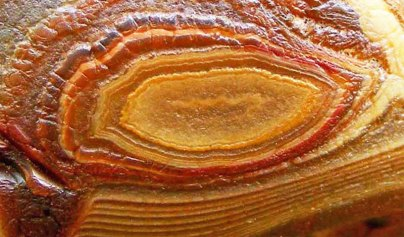 agate-closeup-0004-big