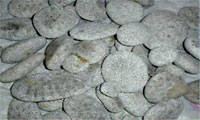 petoskey-stone-rough-2