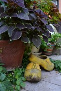 sheffield garden walk