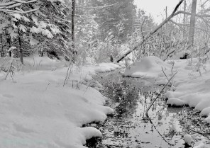 Tranquil snow landscape art photography and greeting card by AgathaO