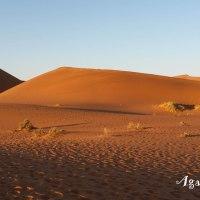 Namibie : Une aventure fabuleuse, un voyage extraordinaire