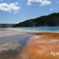 Parc national de Yellowstone en famille, un rêve réalisé