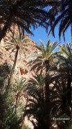 Gorges d'Aït Mansour