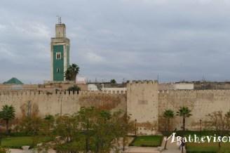 2019NM0121-Meknes-Riad- Vue Mosquee et murailles