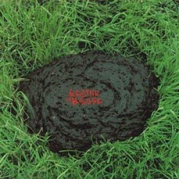 L'album bouse
