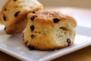 cranberry-scones