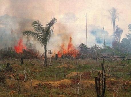 16072020-queimadas-ac