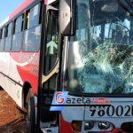 Homem morre atropelado por ônibus na PR-317, entre Toledo e Ouro Verde do Oeste